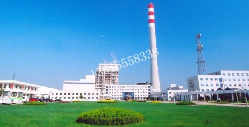 华能南京电厂2*320MW烟囱防腐改造项目